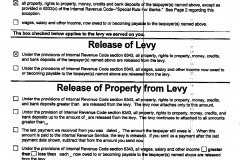 Levy Release